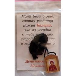 Валерия Ладанка  Д  с фителем упаковка 50шт